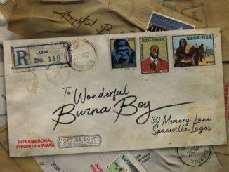 Burna Boy Wonderful