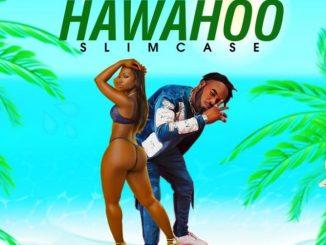 Slimcase Hawahoo Mp3 Download