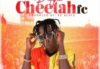 Patapaa - Cheetah FC