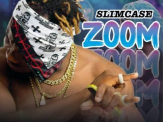 Slimcase Zoom mp3
