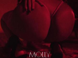 Desiigner - Molly Mp3