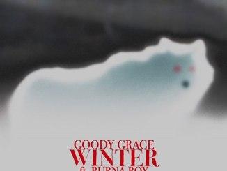 Goody Grace ft. Burna Boy - Winter Mp3