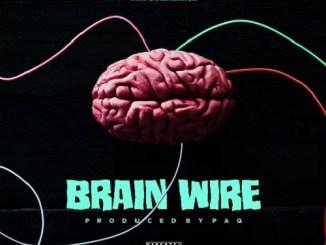 Shatta Wale Brain Wire (Freestyle)