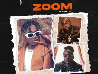 Cheque - Zoom Remix