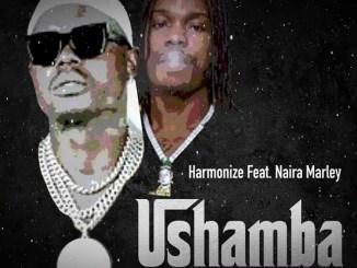 Harmonize ft. Naira Marley - Ushamba