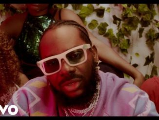 Adekunle Gold ft. Patoranking - Pretty Girl Video