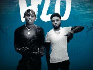 DJ Chose ft. Fredo Bang - H20