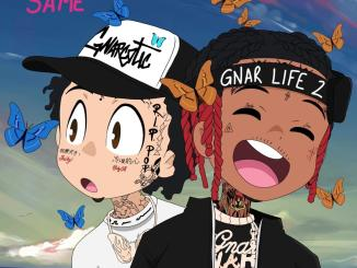 Lil Gnar ft Lil Skies - Not The Same