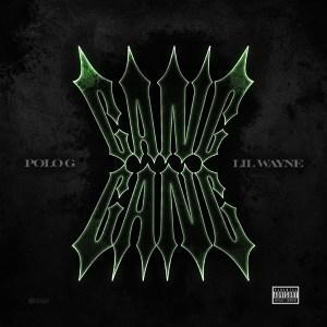 Polo G ft. Lil Wayne - Gang Gang