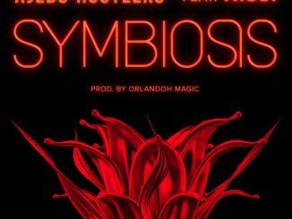 Ajebo Hustlers - Symbiosis