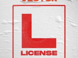 Vector - License