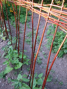 bean pole wattle fence