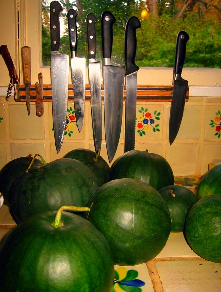 blacktail mountain watermelons homegrown