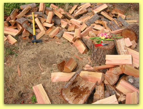 piles of split wood douglas fir