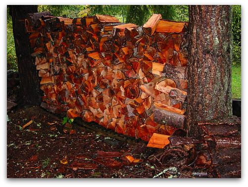 2009_10_15_blog_woodpile