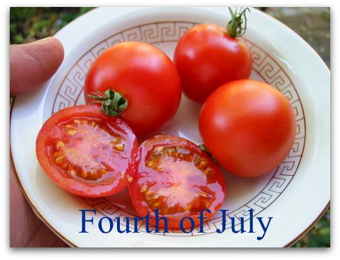 blog_fourth_july