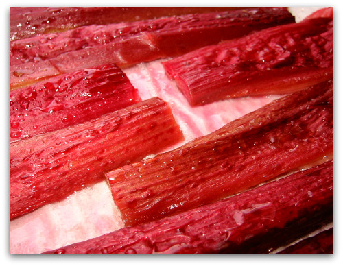 rhubarb roasted and sugared