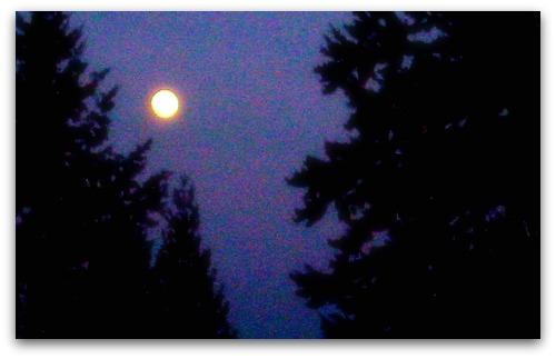 Pacific Northwest moon