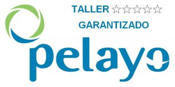 taller-carbox-pelayo