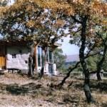 casa de paja en la naturaleza