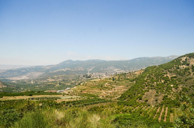 The beautiful hills of the Galilee area are verdant with growth in the spring and early summer.