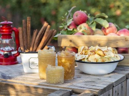 רסק תפוחי עץ ללא תוספת סוכר