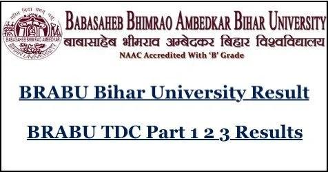 BRABU Result 2020 OUT – Check TDC, BBA, BCA, PG Diploma Sem Results @ brabu.net
