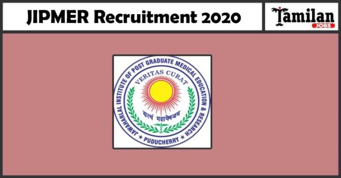JIMPER-Recruitment copy 2020