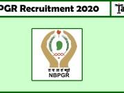 NBPGR Recruitment 2020