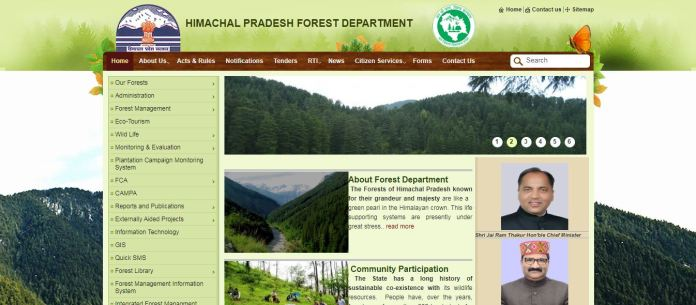 HP Forest Guard Result 2020