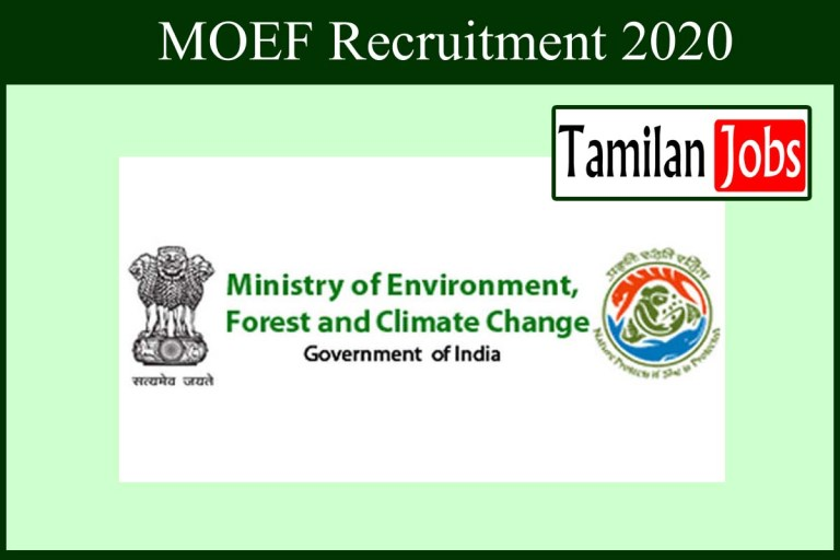 MOEF Recruitment 2020 Out – Apply Consultant Jobs