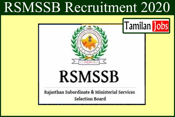 RSMSSB Recruitment 2020 Out – Apply For 1211 Stenographer Jobs