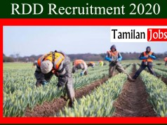 RDD Recruitment 2020