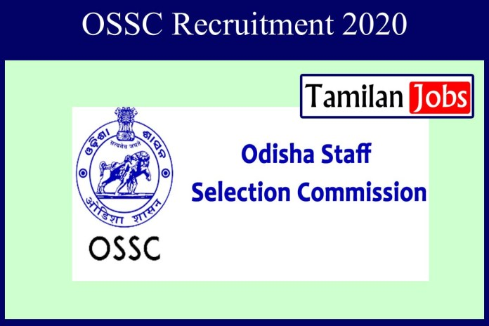 OSSC Recruitment 2020 Out – Apply Online 161 Combined Auditors Jobs