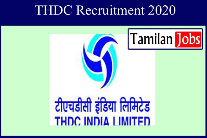 THDC Recruitment 2020 Out – Apply 110 Secretarial Assistant Jobs