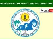 Andaman & Nicobar Government Recruitment 2020