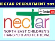 NECTAR Recruitment 2020