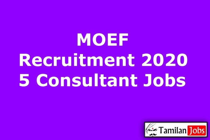 MOEF Recruitment 2020 Out – Apply 5 Consultant Jobs