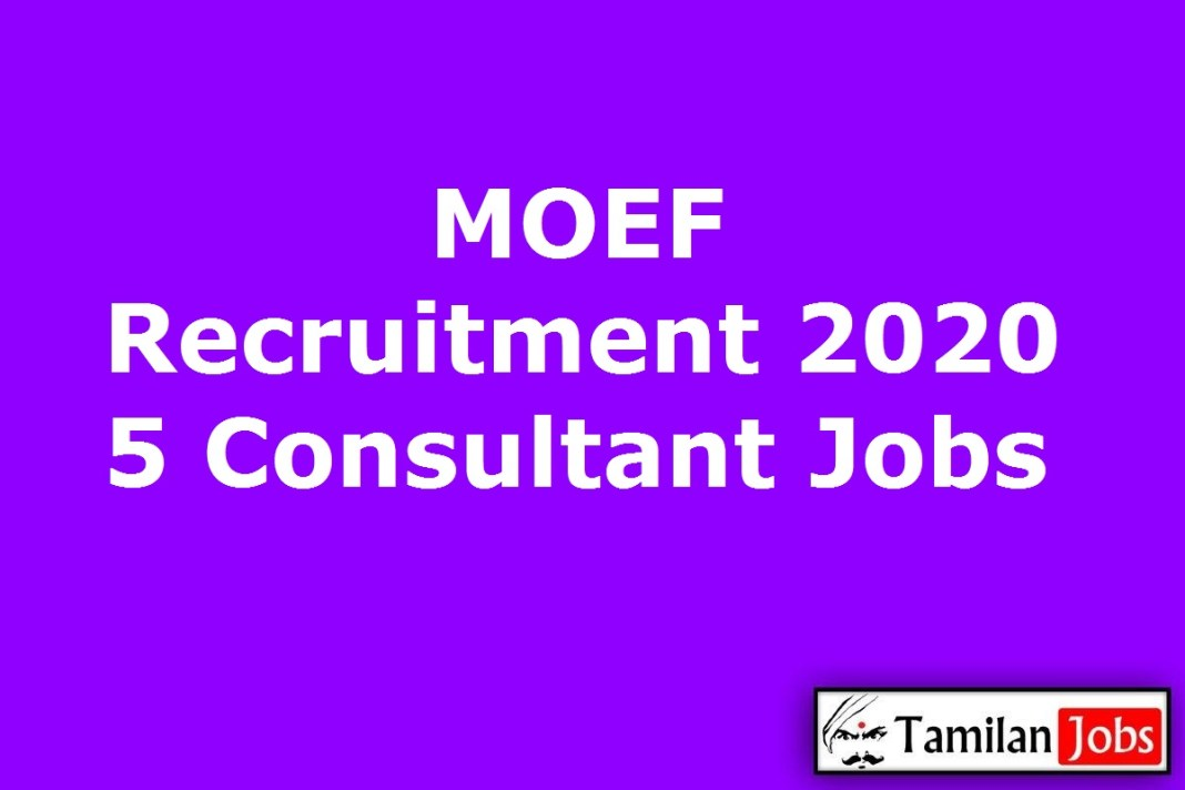 MOEF Recruitment 2020 Out Apply 5 Consultant Jobs