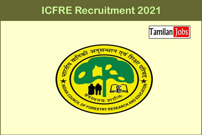 ICFRE Recruitment 2021 Out – Apply Online 24 Junior Project Fellow Jobs
