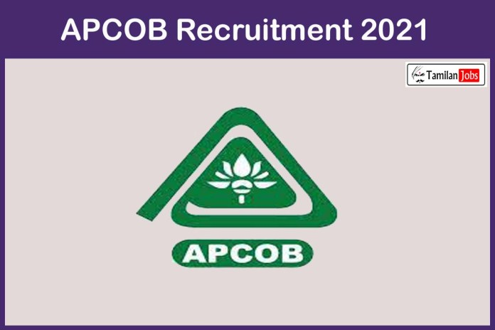 APCOB  Recruitment 2021 Out – Apply Online 26 Manager Jobs