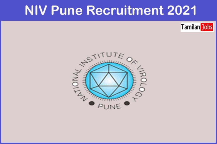 NIV Pune Recruitment 2021 Out – Apply Online 53 Project Research Scientist and other Jobs