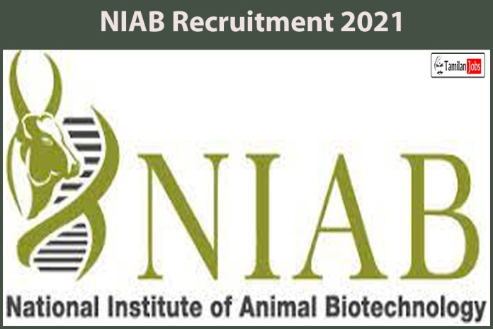 NIAB Recruitment 2021 Out – Apply Online Scientist, Veterinary Jobs