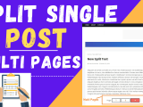 How To Split Single Post Into Multi Pages