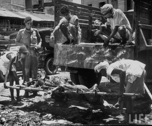 Men unloading corpses from truck in preparation for cremation after bloody rioting between Hindus and Muslims 2 Calcutta (Kolkata) 1946