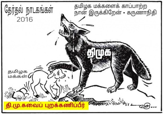 dmk_true_face_cartoon