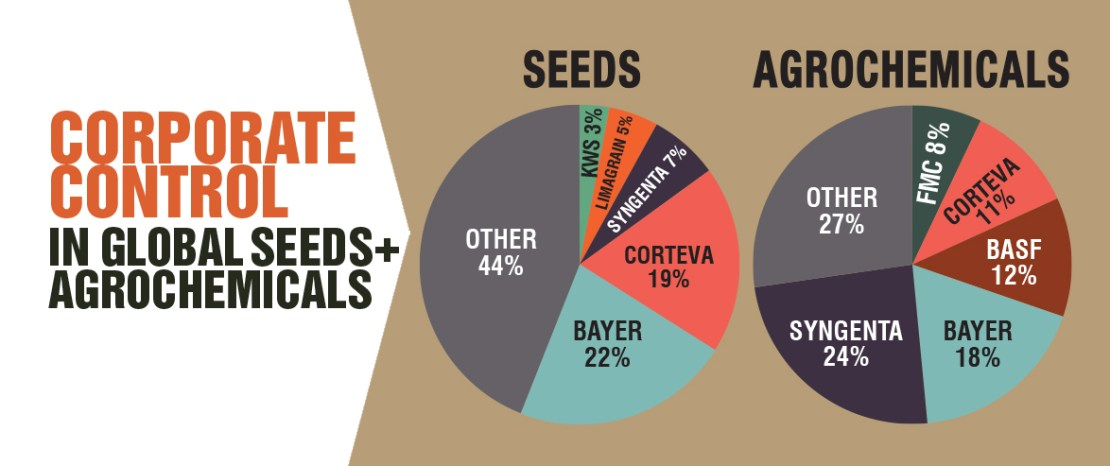 Seeds - A Powerful Weapon to Control the World | Danger to Earth