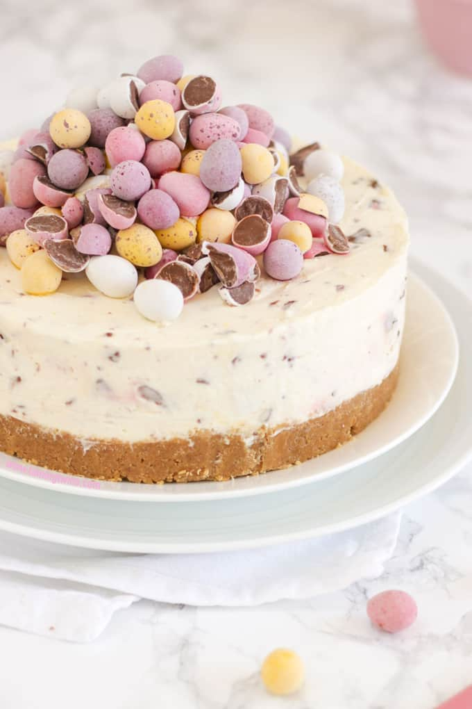 No-Bake Mini Egg Cheesecake
