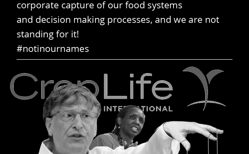 The UN Food Systems Summit is a Sham