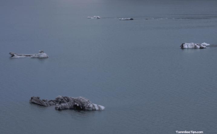 Cruising-Glacier-Bay-National-Park-Glacier-Icebergs.png